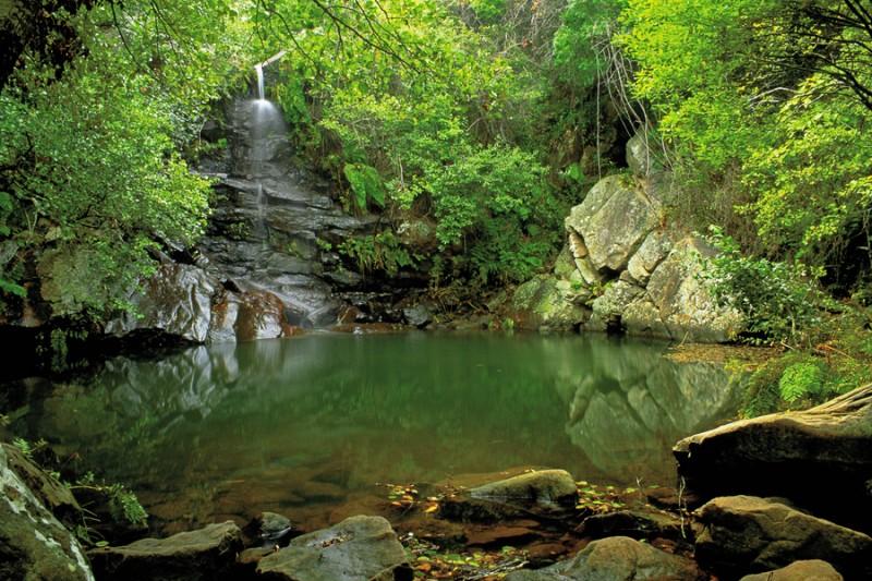 parque-natural-de-los-alcornocales-cadiz