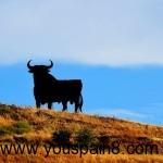 西班牙自驾公路上的大黑牛标志是怎样炼成的?